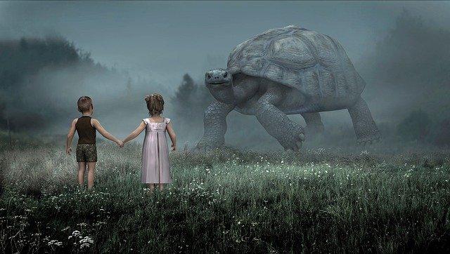 děti a želva