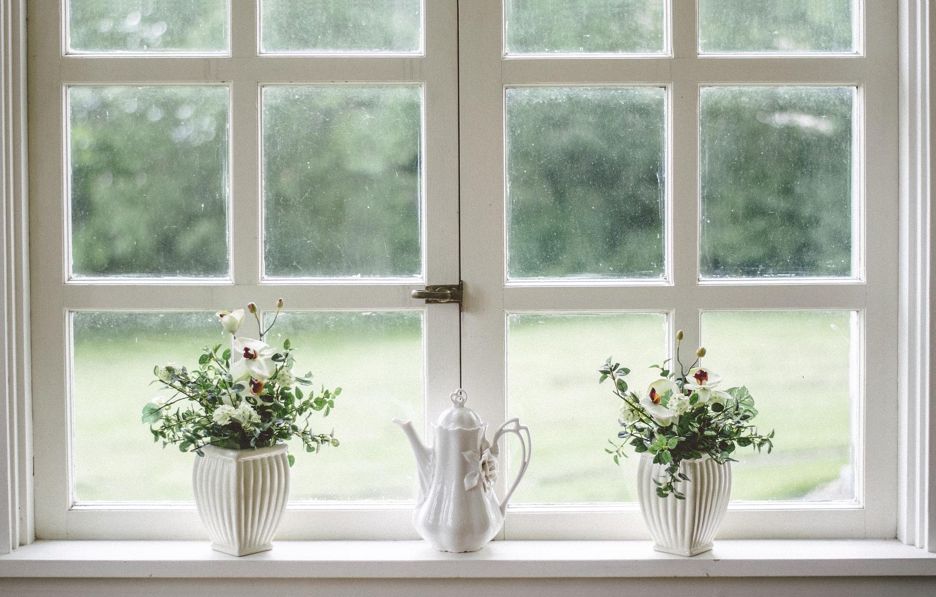 květiny okno
